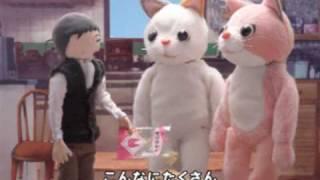 共同制作アニメ - 『はらぺこねこねこ』 - Hungry cats