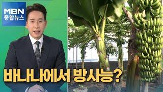 [픽뉴스] 바나나 방사능 / 가운데 손가락 / 1타 강…