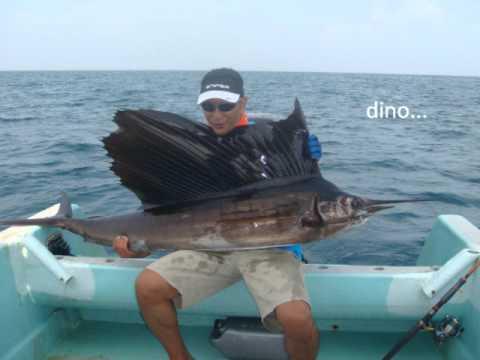 Sailfish 35kg Rompin, Pahang