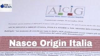 Nasce Origin Italia