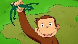 Jorge el Curioso en Español | Jorge el Curioso y el Sonido Invisible | Dibujos animados para niños