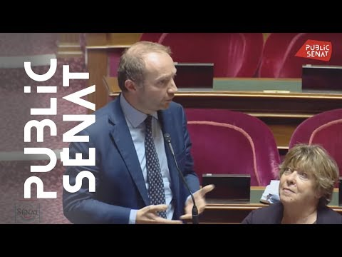 Police Municipale à Paris: Julien Bargeton Rejette L'amendement De Marie-Pierre De La Gontrie
