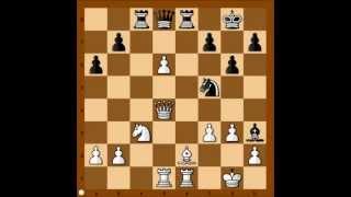 Kasparov vs Carlsen - Reykjavik 2004