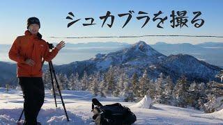 【風景写真】冬の志賀高原シュカブラ天国と夕景の撮影・NikonZ7