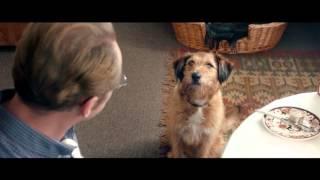 """А что бы сказала ваша собака? """"ВСЕ МОГУ"""" - в кино с 19 ноября"""