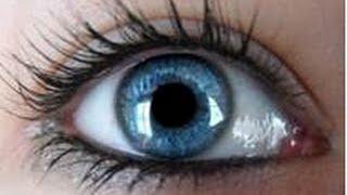 Михаил Краснов - Органы чувств- глаза САД