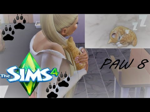 ISSA CAT! JUST BUSINESS:An urban Cinderella series-THE SIMS 4 CATS & DOGS #8