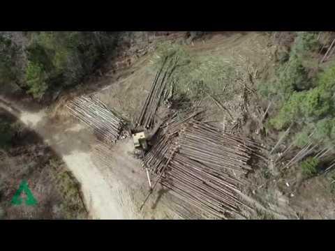 Weyerhauser Lumber Mill Bruce, MS Long Version Video