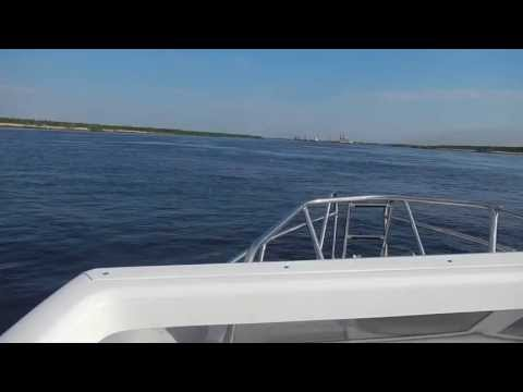 """Дельфин лодка """"Морской Кот"""" СФ620 ИП Прозоров Череповец"""