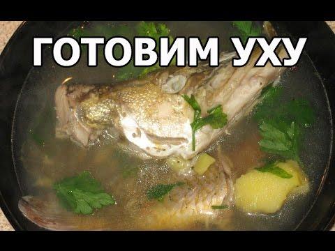 Суп бешбармак