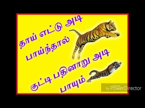 Ancient tamil proverbs Real meaning/நம் முன்னோர்கள் சொன்ன பழமொழியின் உண்மை விளக்கம்