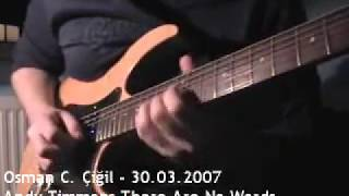 Andy Timmons - There Are No Words Cover - 03/2007