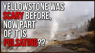 Fear Of Possible ERUPTION Of Yellowstone Stirred Again By PULSING Area The Size Of Chicago