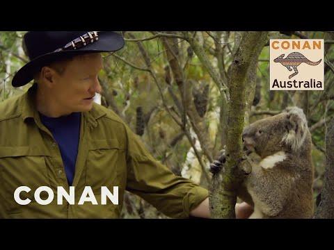 Cover Lagu Conan Encounters Australian Wildlife - CONAN on TBS stafamp3