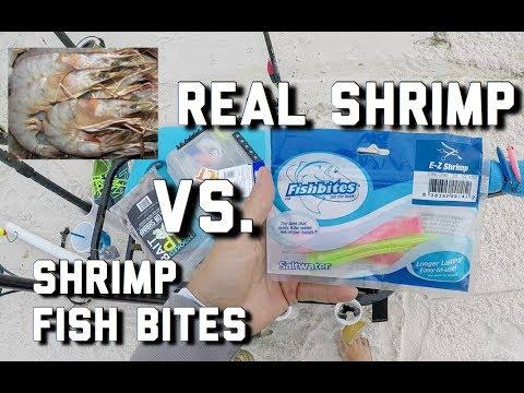 Surf Fishing | Shrimp Fish Bites VS  Real Shrimp