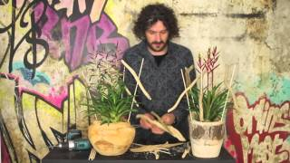 Plant arrangement with Bromelia | Flower Factor How To | Christmas