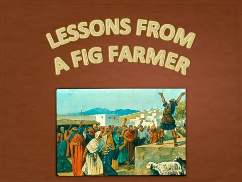 Lessons From A Fig Farmer