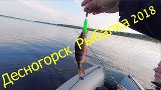 Стоит ли ехать на рыбалку в Десногорск 2018