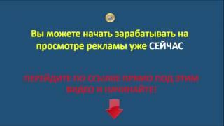 Генератор Трафика GT -видео2