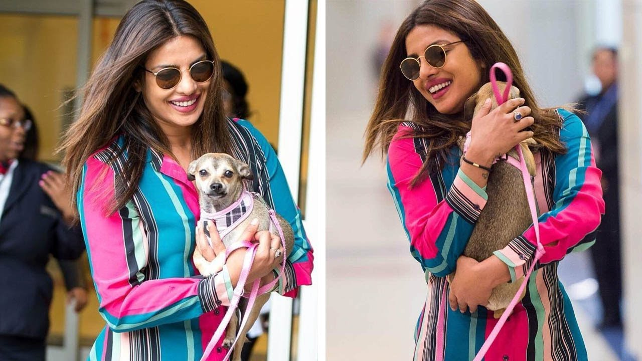 priyanka-chopra-dog