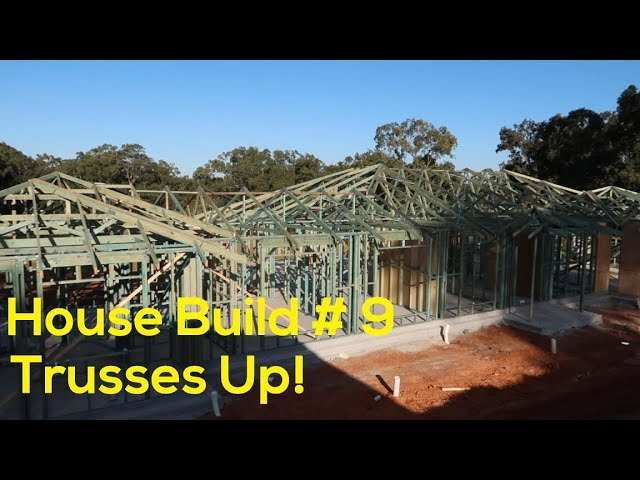 House Build #9 - Roof Trusses done and plant updates