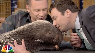Chris Packham and Jimmy Sniff an African Porcupine