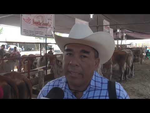 San Marcos, Gro. Inauguran la Expo Agrícola, Ganadera y Pesquera 2019.