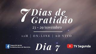 7 Dias de Gratidão - Dia 7