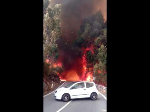 Incêndio em Marco de Canaveses (8 de Agosto 2016) 1