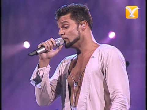 Ricky Martin, Fuego de Noche, Nieve de Día, Festival de Viña 2007