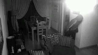 Hidden CCTV camera catches dog thief steal a dog in under a minute!