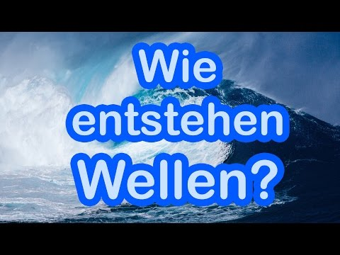 Wie entstehen Wellen? 🌊 🐡