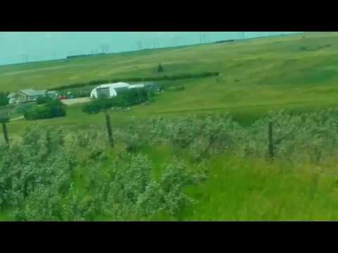 Some fields in Saskatchewan