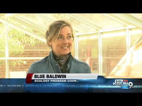 Manzo Elementary School's greenhouse and aquatics system rebuilt