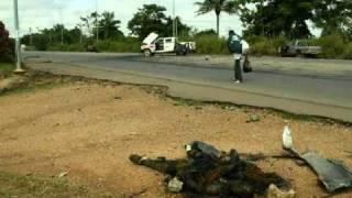 RHDP, preuves des massacres sur la population civile à Bouaké « QG du camp Ouattara ».