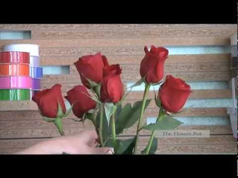 Flower Pot of Knoxville & Flower Pot of Knoxville - YouTube