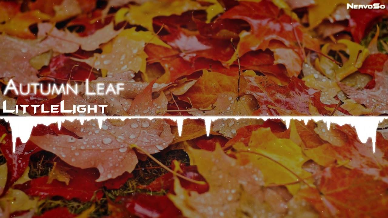 【Drum and Bass】LittleLight   Autumn Leaf