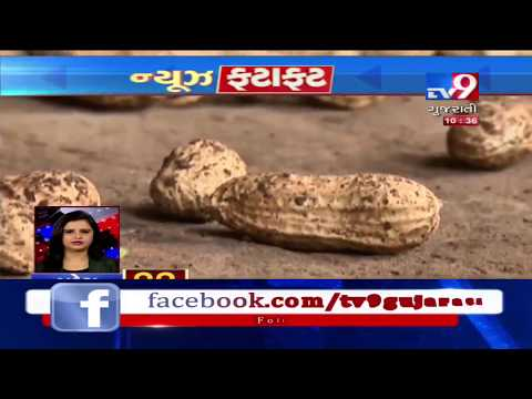 Top News Stories From Gujarat: 24/6/2019| TV9GujaratiNews