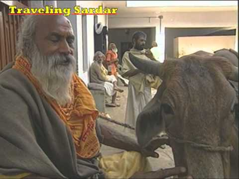 Varanasi (Uttar Pradesh-India)