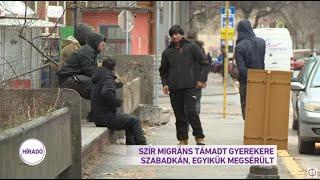 Szír migráns támadt gyerekekre Szabadkán, egyikük megsérült