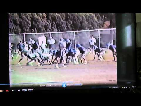 Korea Football 1988 Giants 20 vs Colts 6 Part 2 of 4