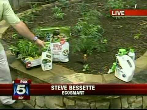 Stacy Elgin in the garden with Justin Cave and Steve Bessette talking about Common Garden Mistakes