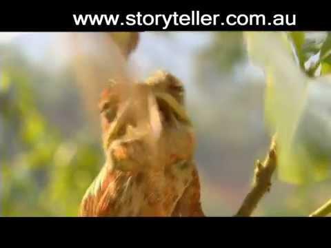 Part 7 Madagascar Island Ark - Before It's Too Late | Storyteller Media