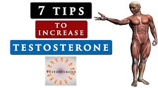 How to INCREASE your TESTOSTERONE level naturally