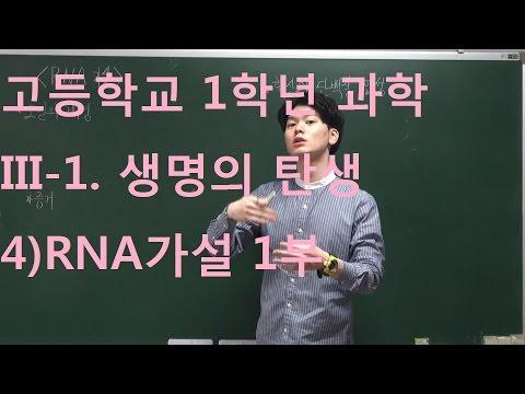 고등과학 31 4RNA 가설 1부