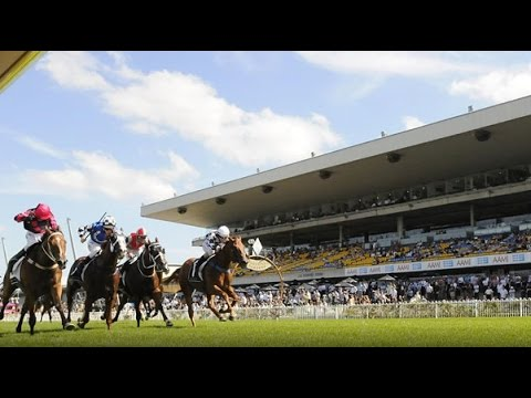 John Walter's Derby Day preview - Rosehill Gardens and Flemington