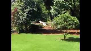 Quadricóptero de madeira barato