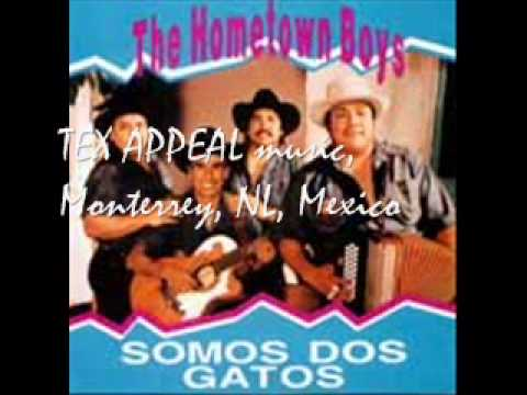 THE HOMETOWN BOYS Somos Dos Gatos