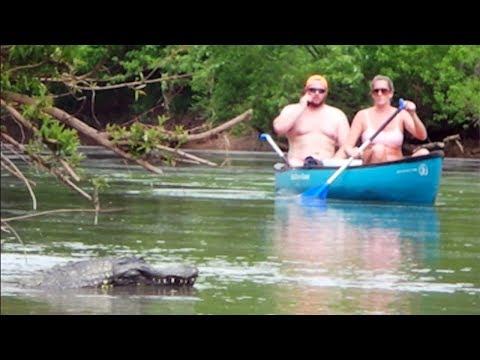 Remote Controlled Alligator Prank 2018 - Boat Cops Called!
