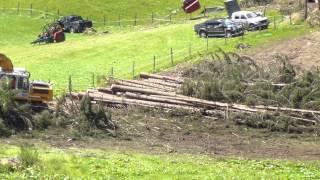 Holzbringung aus Extremgelände